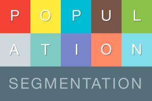 population segmentation